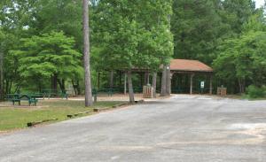 Bowie Nature Park - Fairview, TN